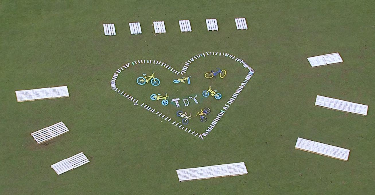 Picture of the eco themed land art in Cayton by Cayton Primary School