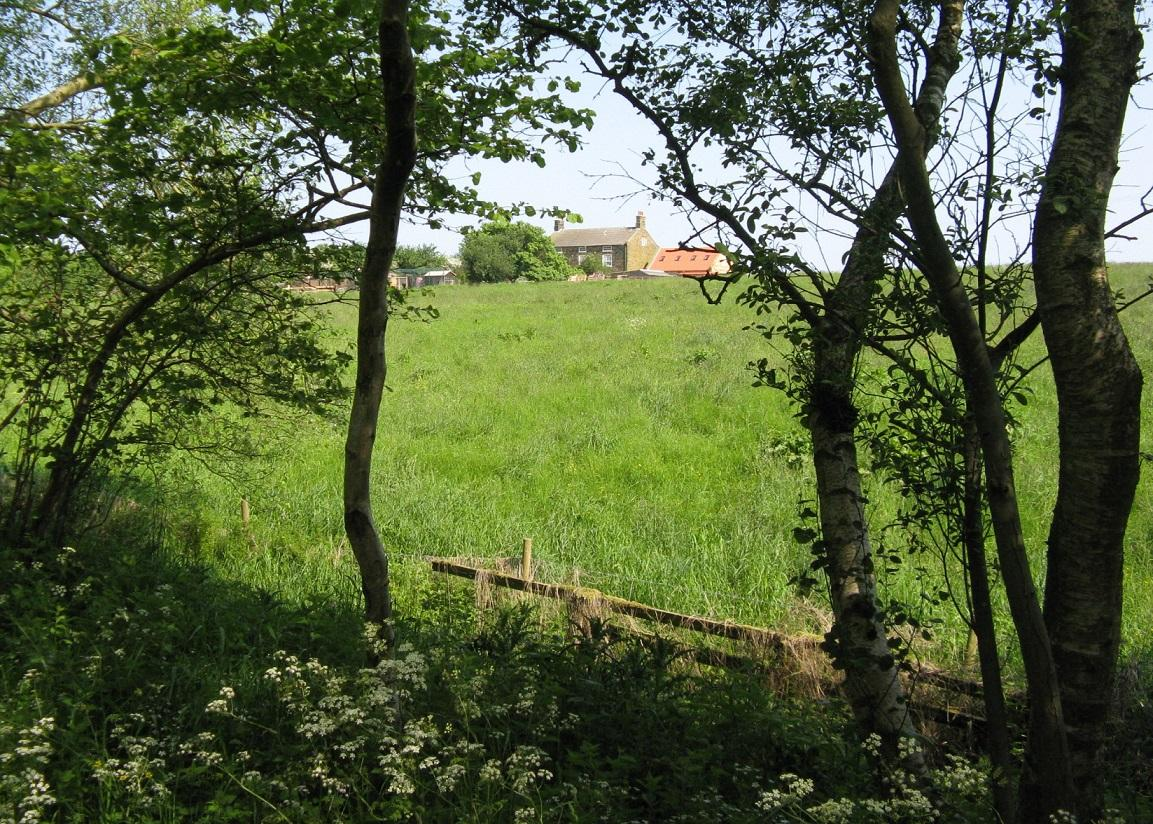 Picture of the view from the cinder track close to Broomfields Farm