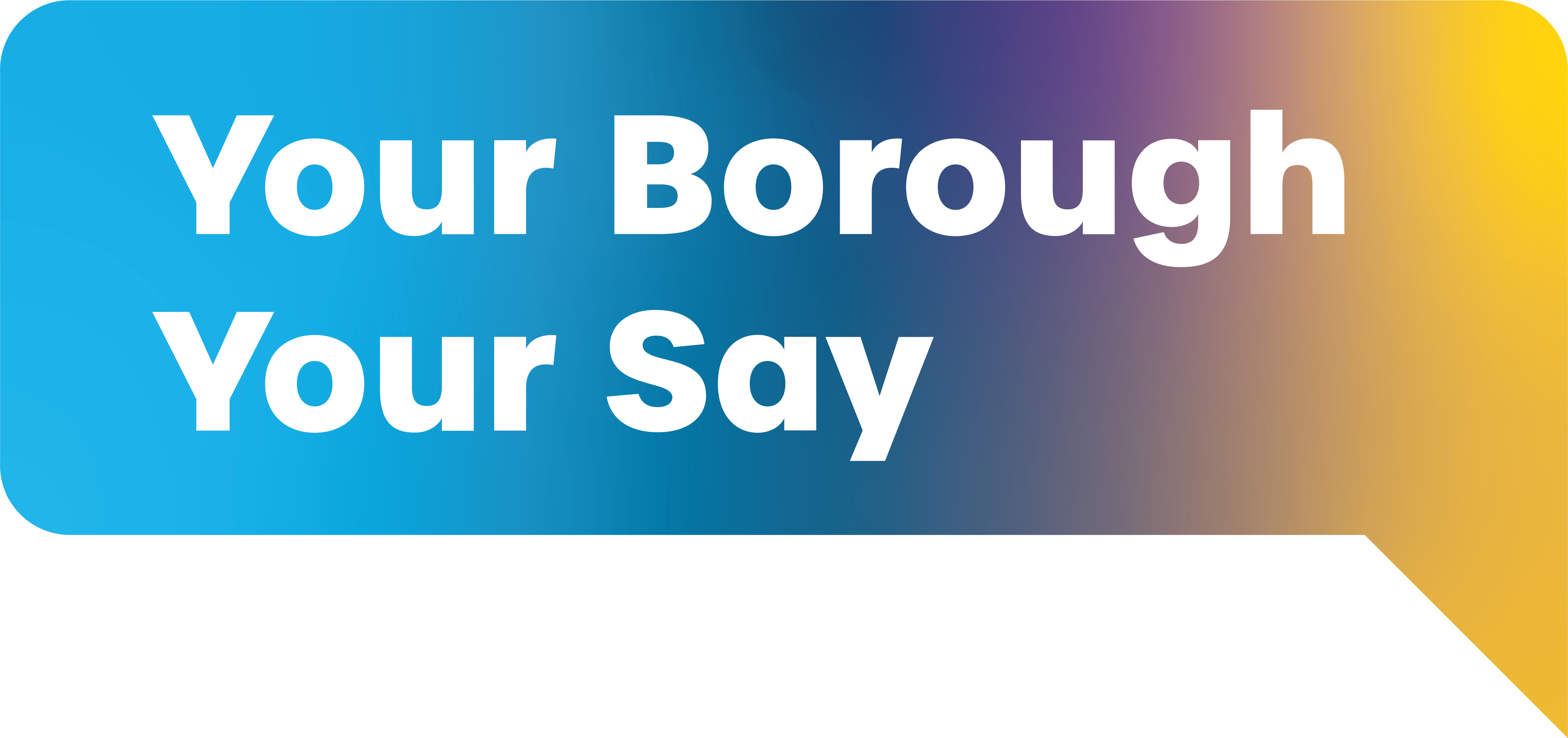 Your Borough Your Say graphic