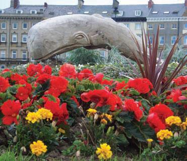 Whale sculpture and flowers
