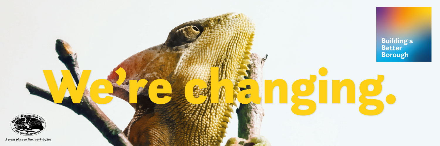 We're changing - Building a Better Borough promotional banner